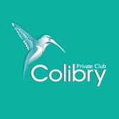 Створення логотипу Colibry